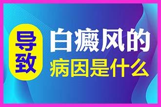 """白殿病早期图片郑州西京介绍-白斑""""自愈""""可能性"""