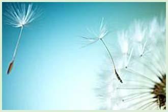 怎么更好的防止白癜风出现在我们的生活里呢